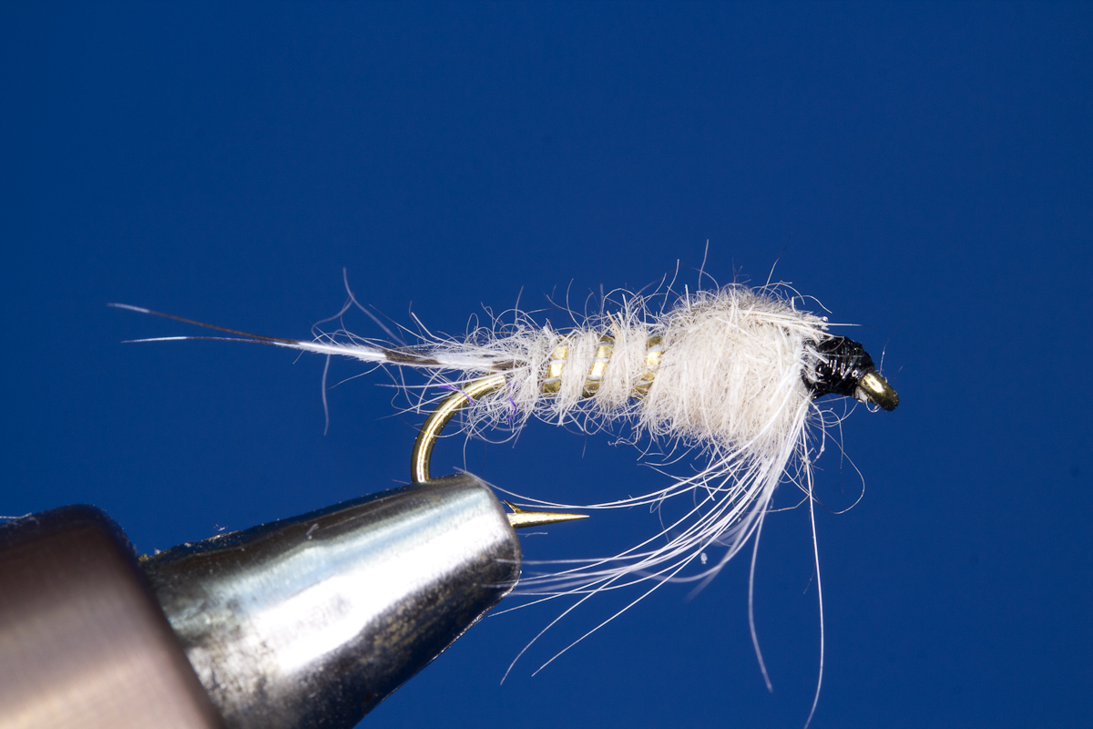 Blue Dun Nymph