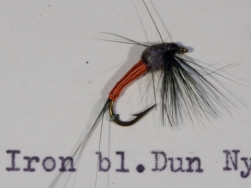 Iron Blue Dun Nymphe