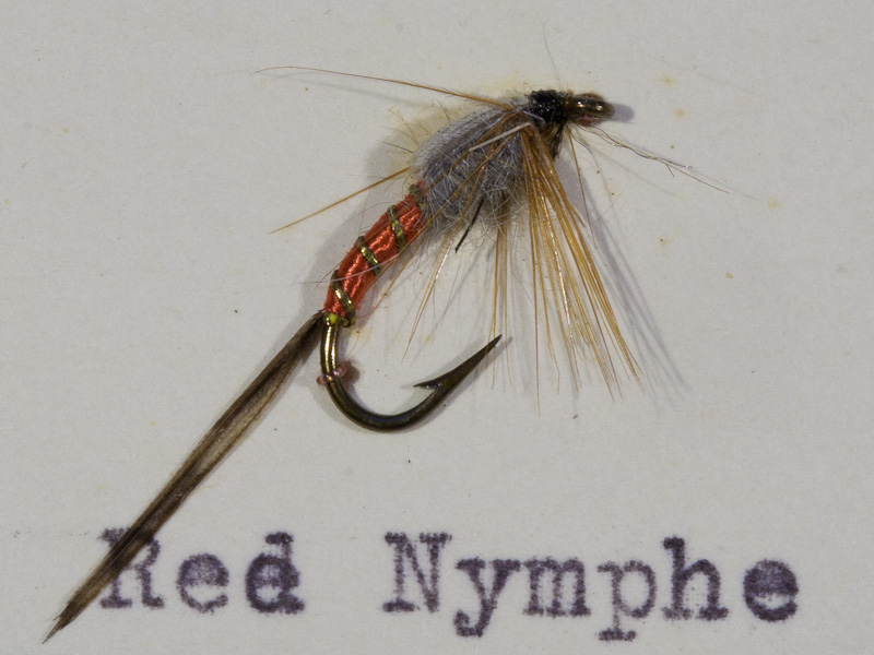 Red Nymphe