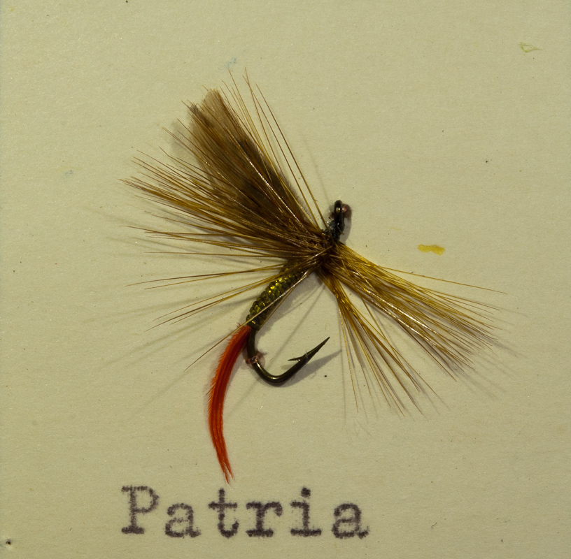 Patria Gold/Ginger